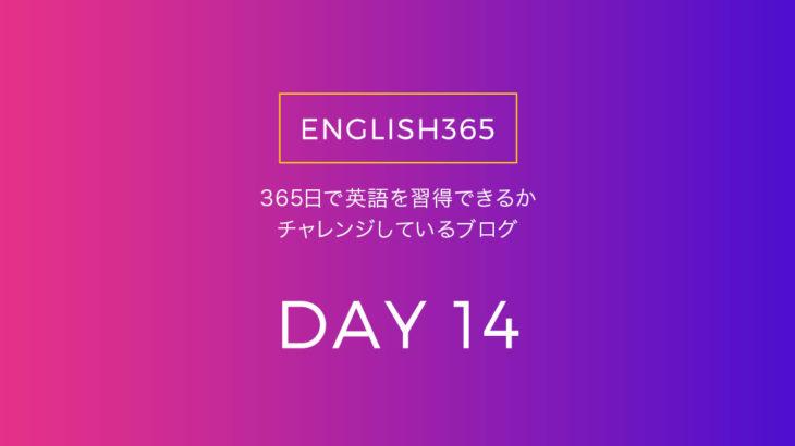英語習得チャレンジ「14日目」…疲労でニュース訳し読みしかしてないの巻