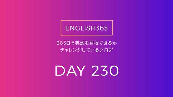 英語習得チャレンジ「230日目」…動画溜めてたのでいろいろ観た