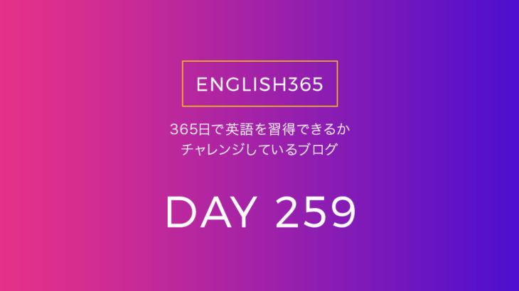英語習得チャレンジ「259日目」…wait and see /様子見したいこともある