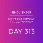 英語習得チャレンジ「313日目」…brutal/アナ雪2観た